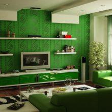 Yeşil Renk ile Ev Dekorasyonu
